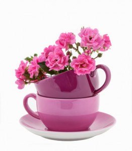 Coffee Cups with Pink Roses