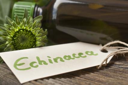 Echinaceaerkältungssaft