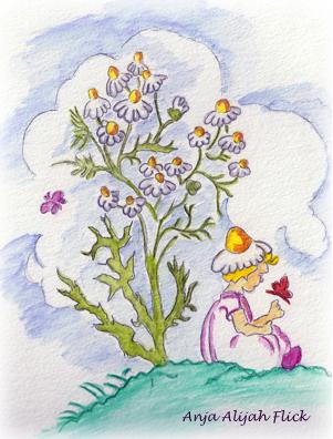 Heilpflanzenkalender Juli NEU