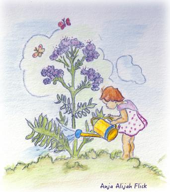 Heilpflanzenkalender Oktober NEU
