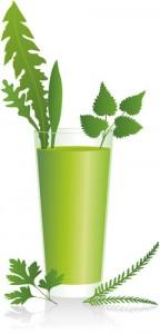 Green Smoothie ( Grüner Smoothie )