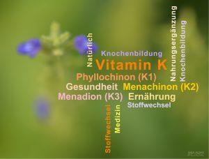 Vitamin K: Das unbekannte Vitamin